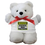 Do Not Operate Warning Teddy Bear